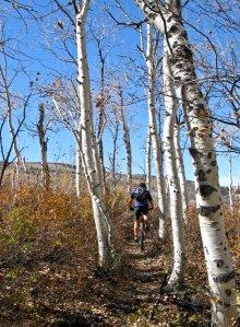 Bill climbing John's Trail