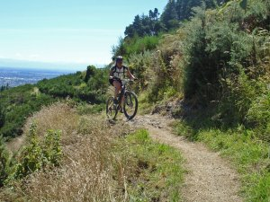 Port Hills track overlooking Christchurch