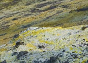 Sulfur deposits
