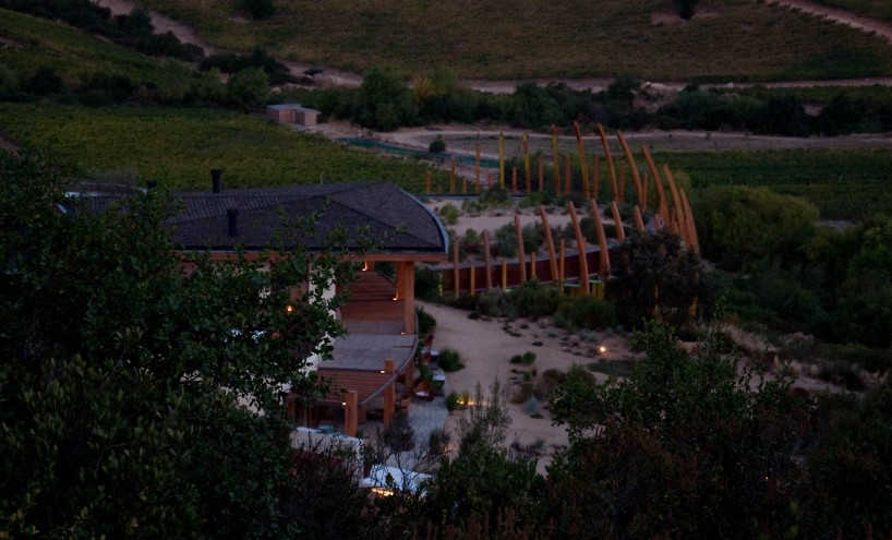 The ribs of the Clos Apalta Winery and the Casa Lapostolle guesthouse