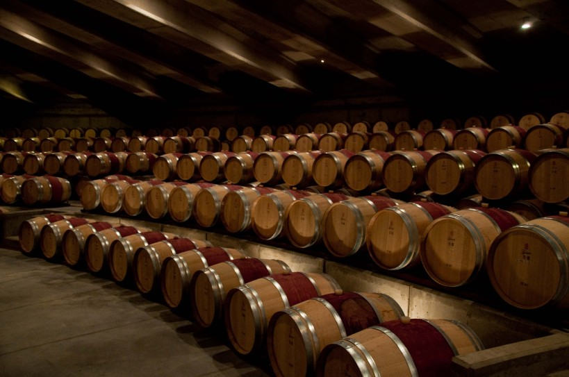 Aging barrel lecture hall at Vina Montes