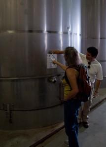 Tasting the 2009 Sauvignon Blanc at Viu Mament