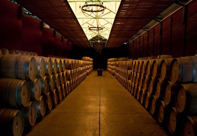 Barrel room at Viu Mament
