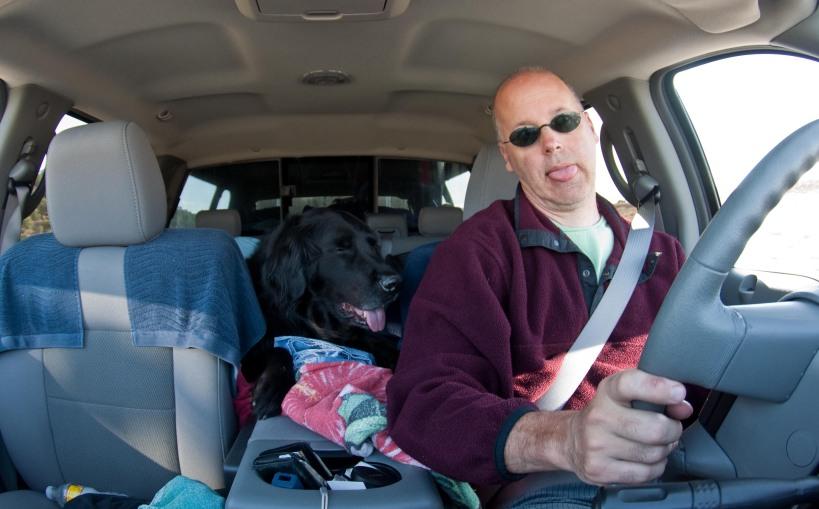 Nick Dog is my copilot