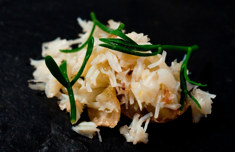Spider Crab with Jerusalem artichokes