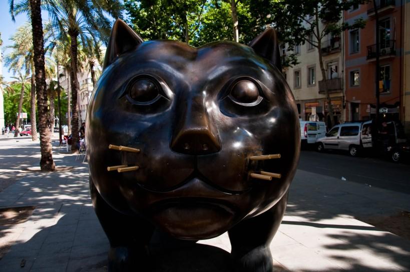 Raval's big cat