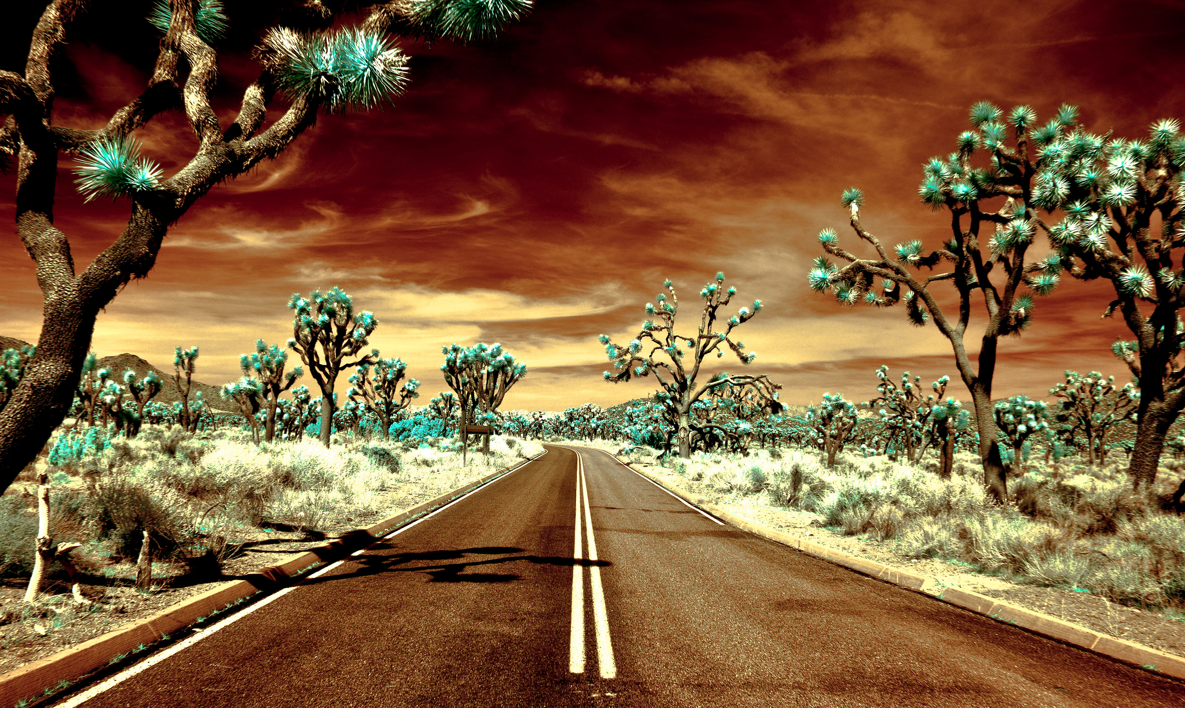 Good Color Death Valley To Joshua Tree National Park Another Header