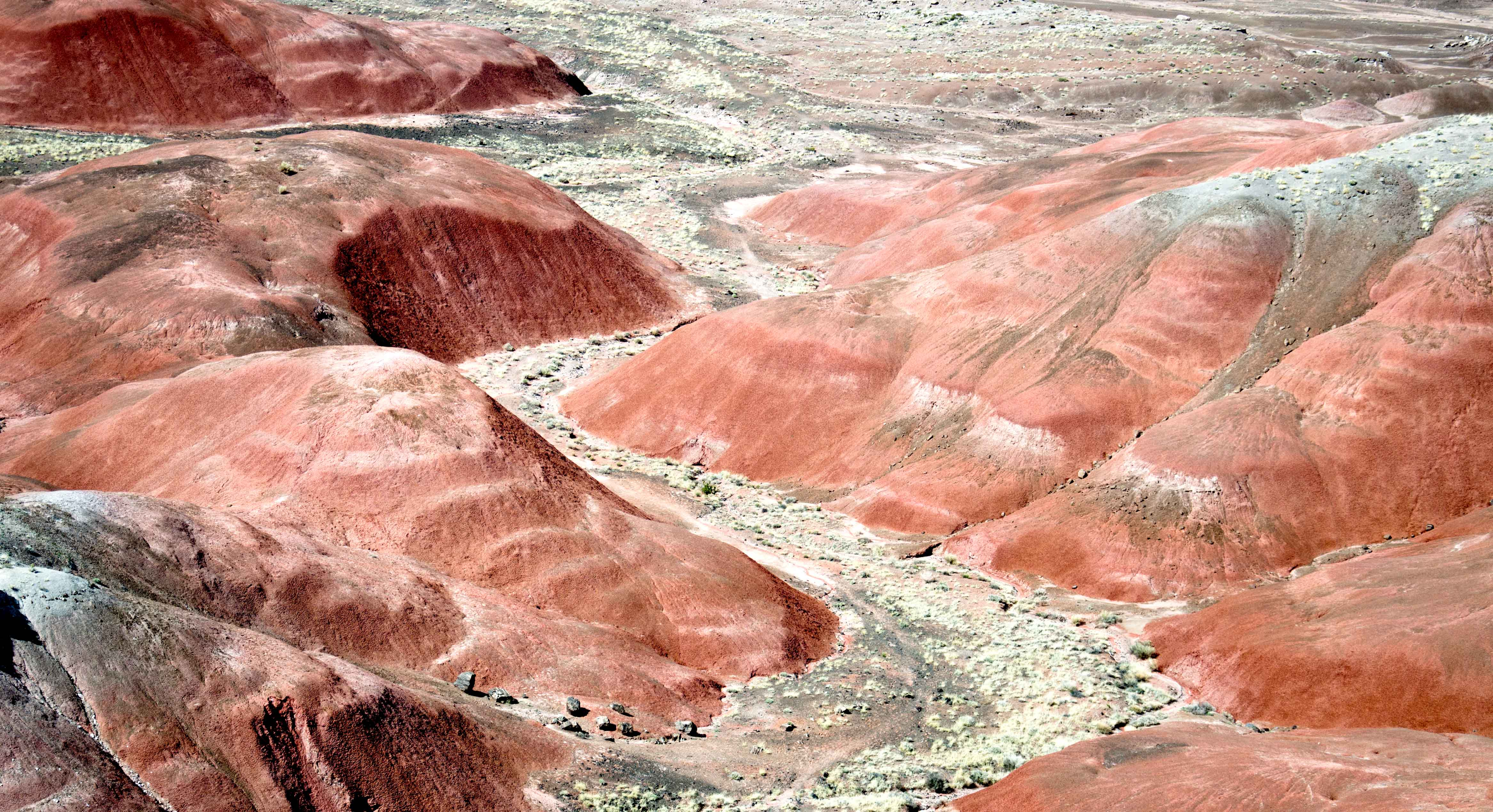 National parks petrified forest another header the painted desert in petrified forest national park sciox Choice Image