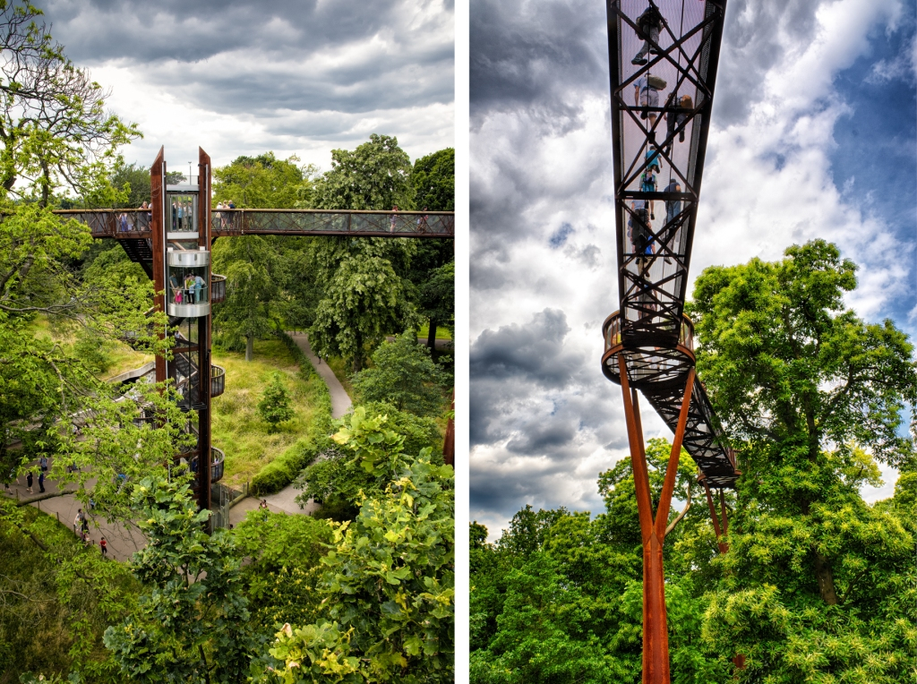 The Treetop Walkway