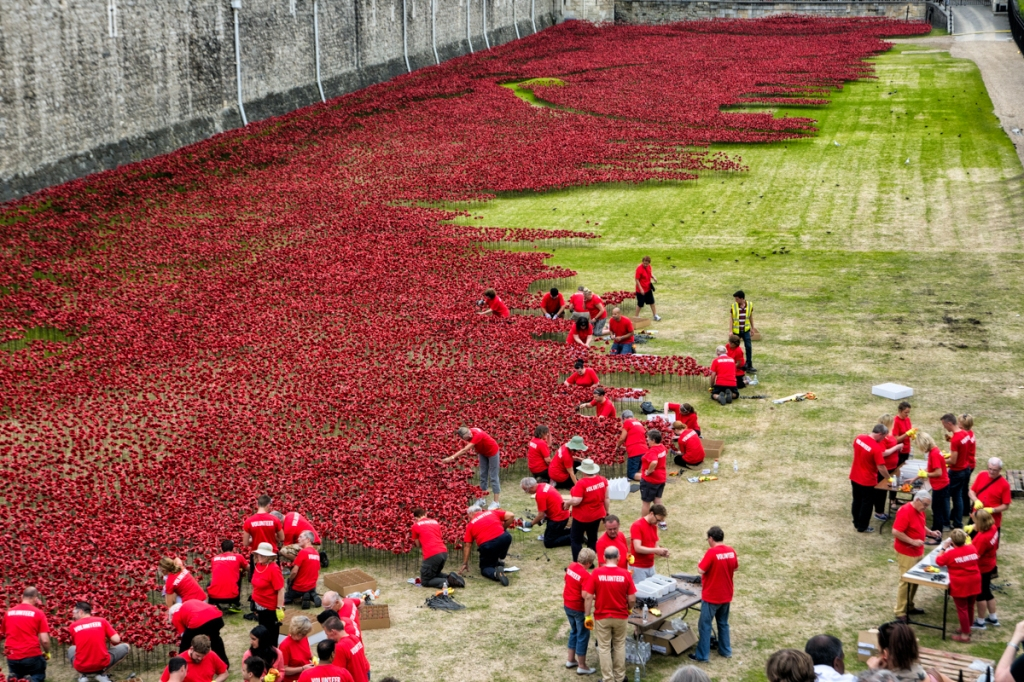 Volunteers add to the flood of poppies at the Tower of London.